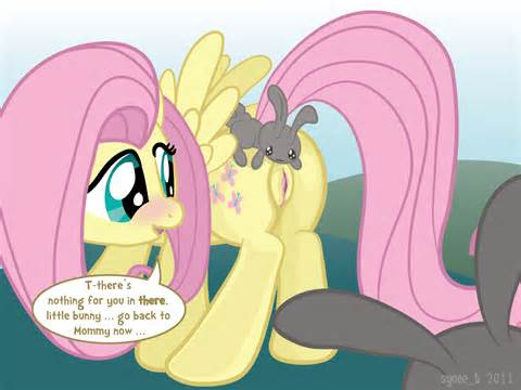 Image 640444 Fluttershy Friendship Is Magic, mon petit poney Syoee B